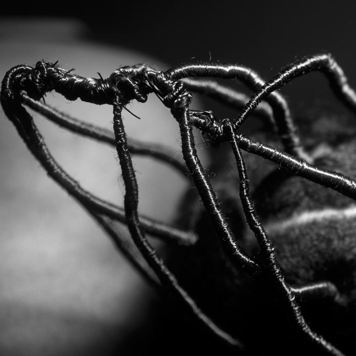 content_fubiz-juliana-kasumu-photography-05